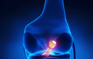 ACL - The importance of Prehab and Rehab